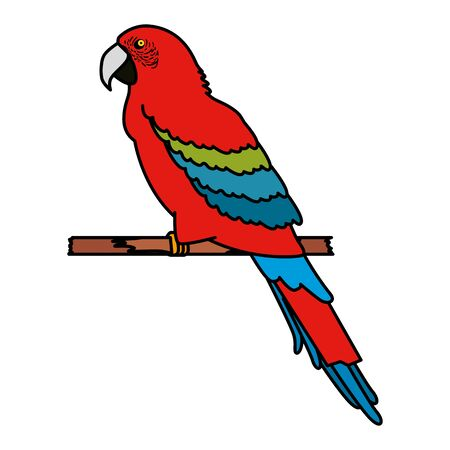 parrot icon graphic design vector illustration