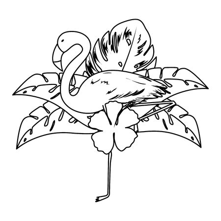 exotic flemish bird with flowers and leafs vector illustration design