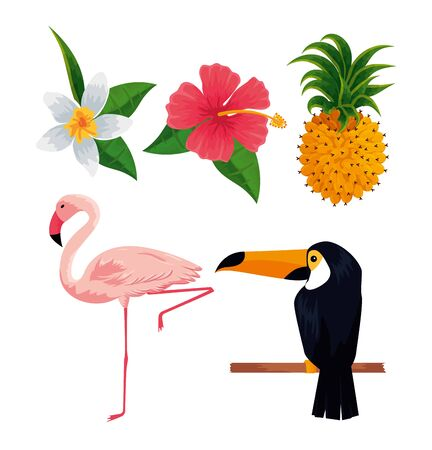 set tropical flowers with flamish and toucan vector illustration