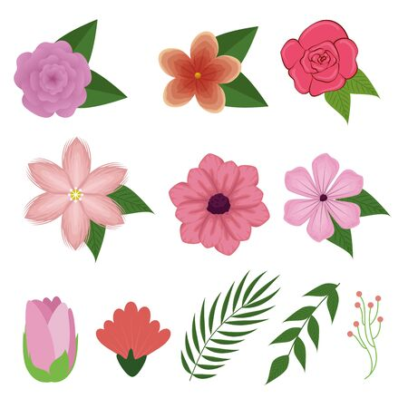 set exotic flowers plants with branches leaves vector illustration Ilustracja
