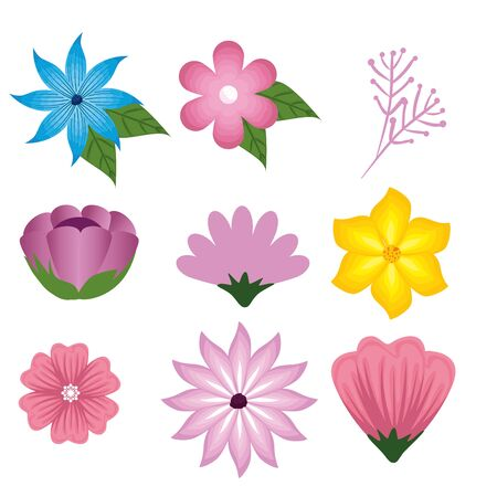set flowers and roses plants with branches leaves vector illustration