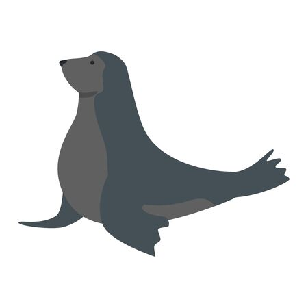 circus seal marine animal vector illustration design