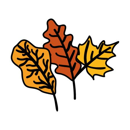autumn branches with leafs isolated icon vector illustration design