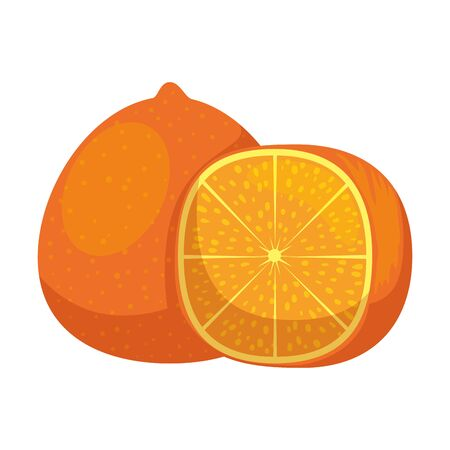 orange icon graphic design vector illustration