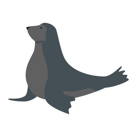 circus seal marine animal vector illustration design
