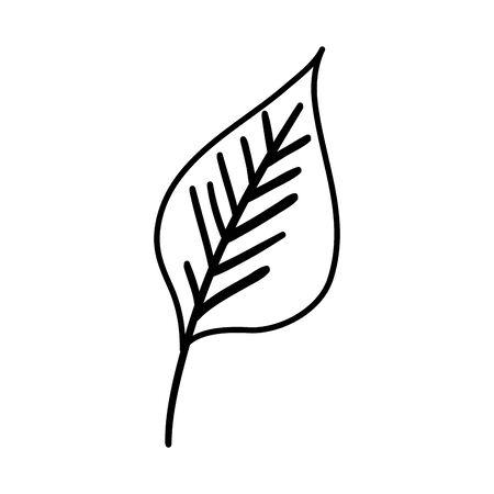 autumn dry leaf nature icon vector illustration design Stock Illustratie