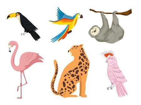 set of group animals exotics vector illustration design