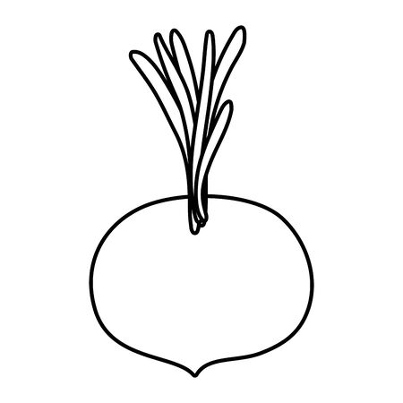 onion fresh vegetable healthy icon vector illustration design