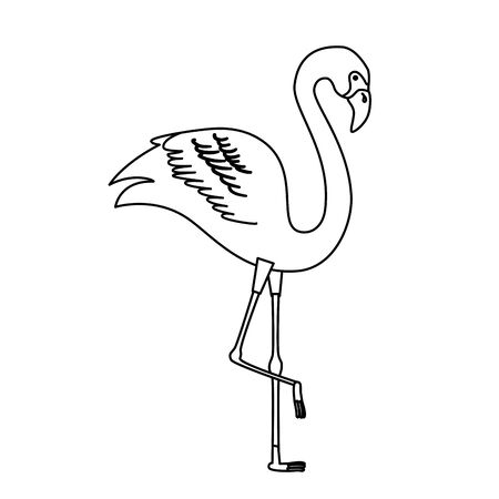 flamingo pink animal exotic line style icon vector illustration design