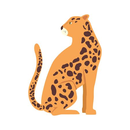 leopard animal exotic isolated icon vector illustration design