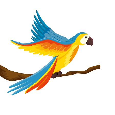 parrot animal exotic in branch isolated icon vector illustration design