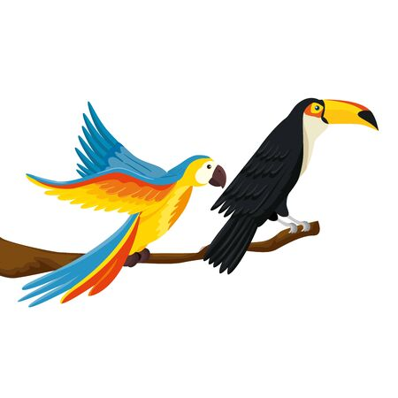 parrot with toucan on branch isolated icon vector illustration design