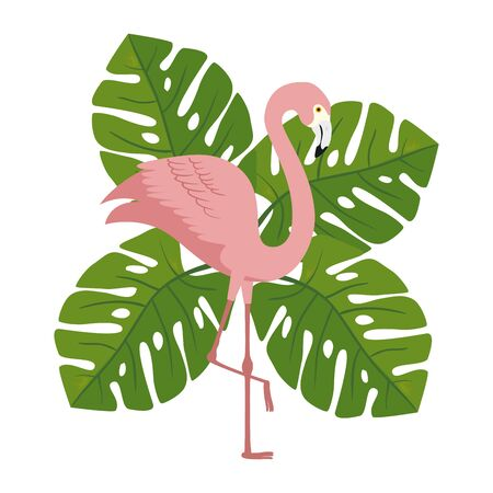 flamingo pink animal with leafs nature vector illustration design Ilustracja