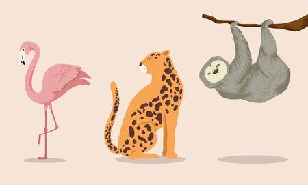 set of animals exotics tropicals vector illustration design Ilustracja