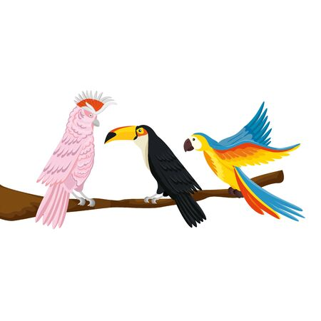 parrots with toucan on branch isolated icon vector illustration design