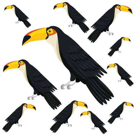 background of toucans animals exotic vector illustration design