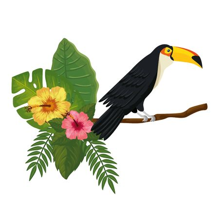 toucan on branch with leafs and flowers vector illustration design