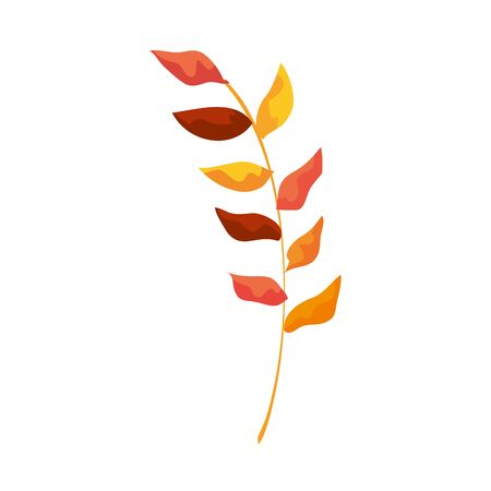 autumn branch with dry leafs nature icon illustration design