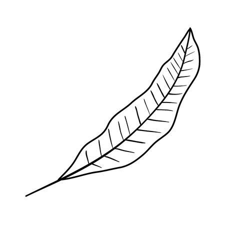 ecology leaf plant nature icon vector illustration design