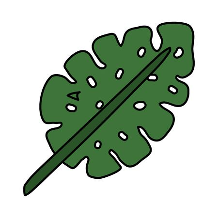 exotic leaf palm tropical icon vector illustration design