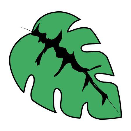 exotic and tropical leaf plant vector illustration design