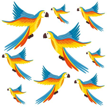 background of parrots animals exotic vector illustration design