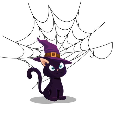 cat of halloween with witch hat and spider web vector illustration design