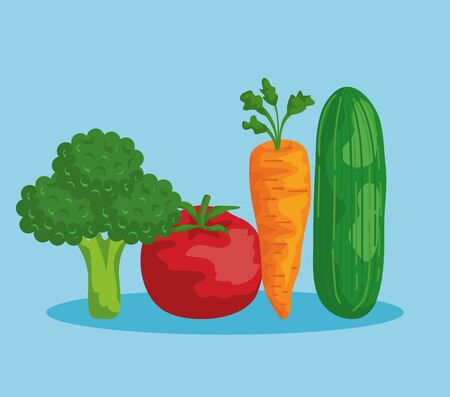 fresh broccoli with tomato and carrot with cucumber to healthy food vector illustration
