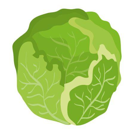 frisches Kohlgemüse gesundes Symbolvektor-Illustrationsdesign