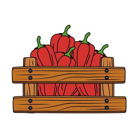 fresh pepper vegetable in wooden box vector illustration design