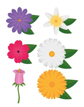 set of exotic flowers plant with tropical leaves over white background, vector illustration