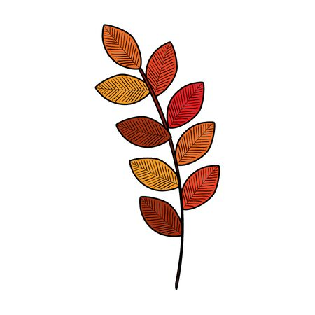 autumn branch with dry leafs nature icon illustration design Reklamní fotografie - 135482990