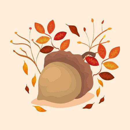 nut with leafs of autumn vector illustration design
