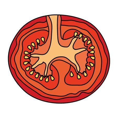 fresh tomato vegetable healthy icon vector illustration design