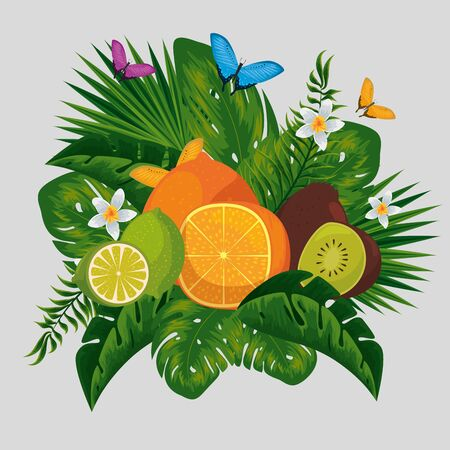 exotic fruits with tropical flowers and butterflies animals vector illustration 向量圖像