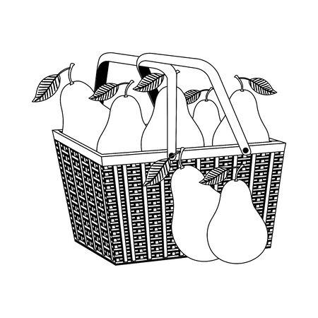 fresh pears fruits in basket straw vector illustration design