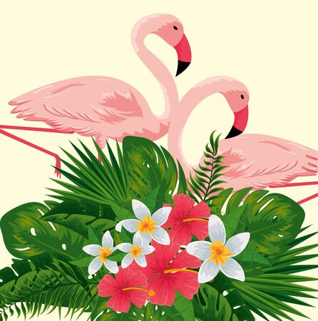tropical flamingos with exotic flowers plants vector illustration 向量圖像
