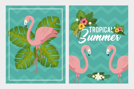 set scenes of tropical summer poster with flamingos and flowers vector illustration design