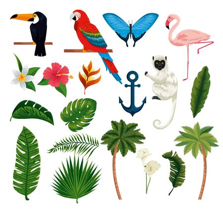 set exotic animals with tropical leaves and palms vector illustration