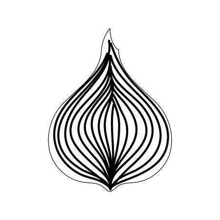 fresh onion vegetable nature icon vector illustration design