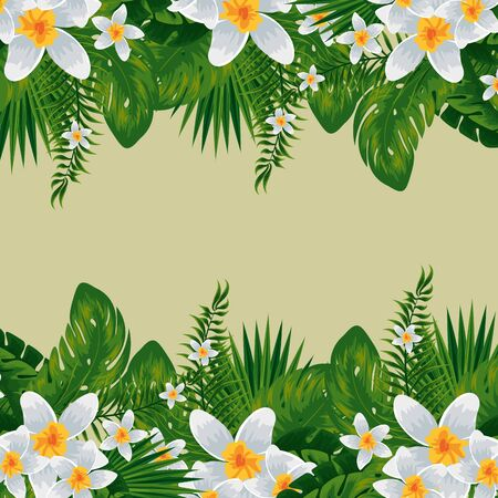 tropical flowers plants with nature leaves vector illustration