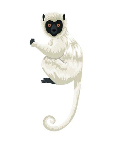 Conception d'illustration vectorielle de caractère singe capucin tropical