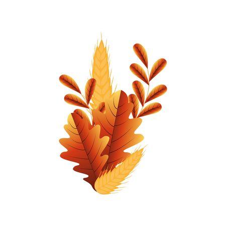 Autumn leaves design, season nature ornament garden decoration and botany theme Vector illustration Ilustrace