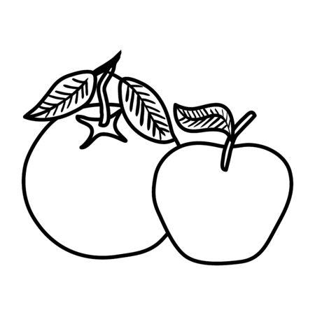fresh orange and apple fruits nature vector illustration design