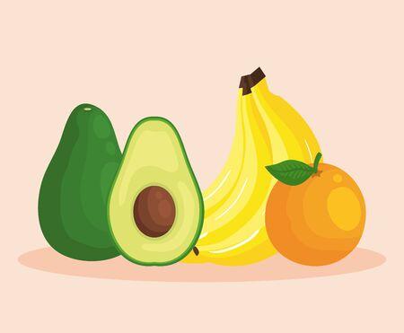 fresh avocado with bananas and orange fruits to healthy food vector illustration Çizim