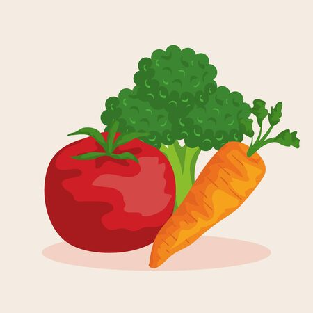 fresh tomato with broccoli and carrot vegetables to healthy food vector illustration