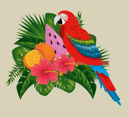 parrot with exotic fruits in the leaves and flowers vector illustration 向量圖像