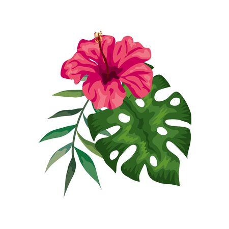 flower of pink color with branch and leafs vector illustration design