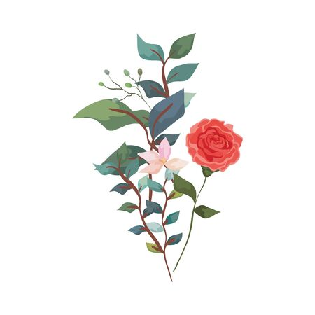 cute rose with flower and leafs isolated icon vector illustration design Stock Vector - 136881873