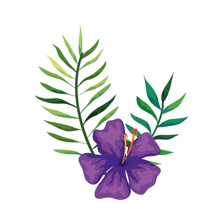 natural flower of purple color with branches and leafs vector illustration design  イラスト・ベクター素材